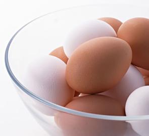 卵の殻の除菌・抗菌に