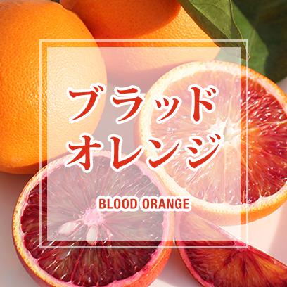 柑橘王国愛媛県産のブラッドオレンジ製品が勢揃い!