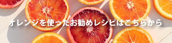 オレンジレシピここから