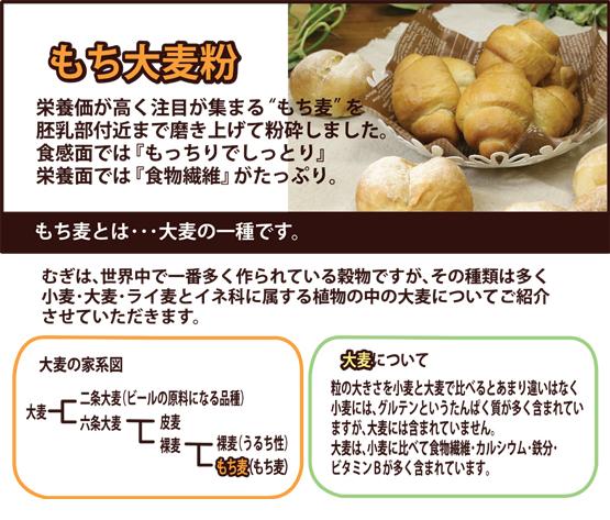 もち大麦粉説明-1